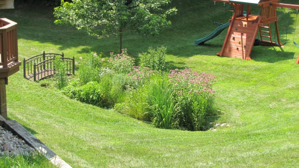 Backyard rain garden for Rain garden design