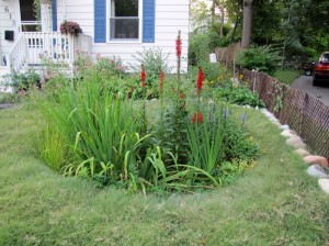 Sustainable Rain Garden Installation in Wayne County, MI
