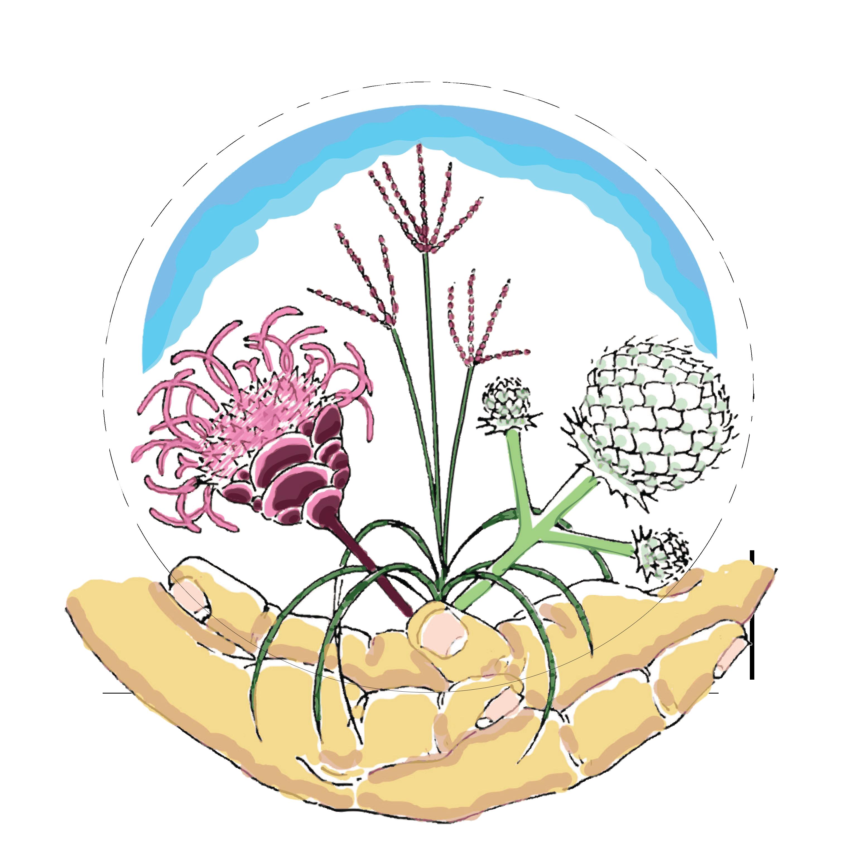 Sustainable Garden Design pueblosinfronterasus