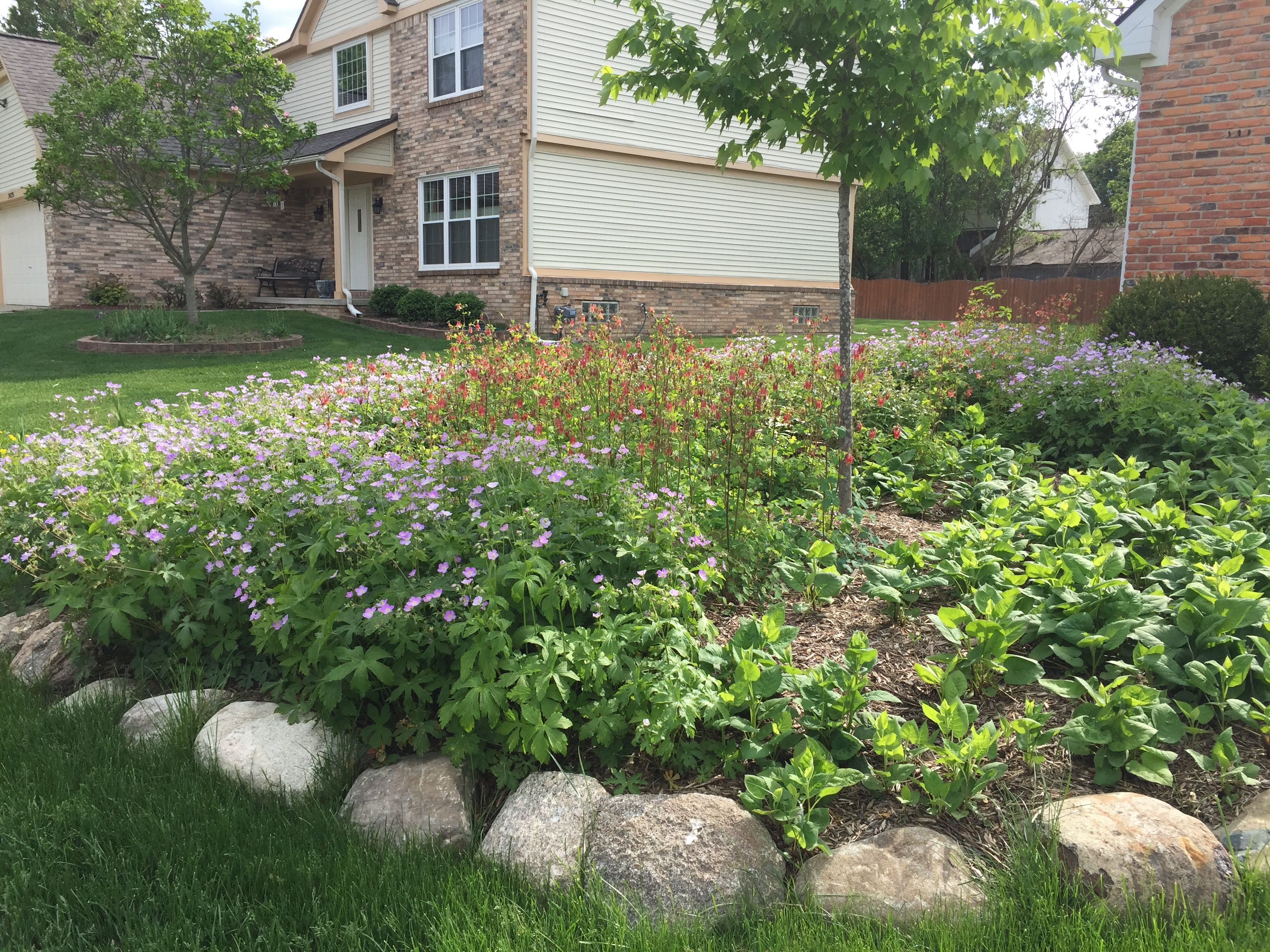 perennial bed design native landscaping in oakland county mi