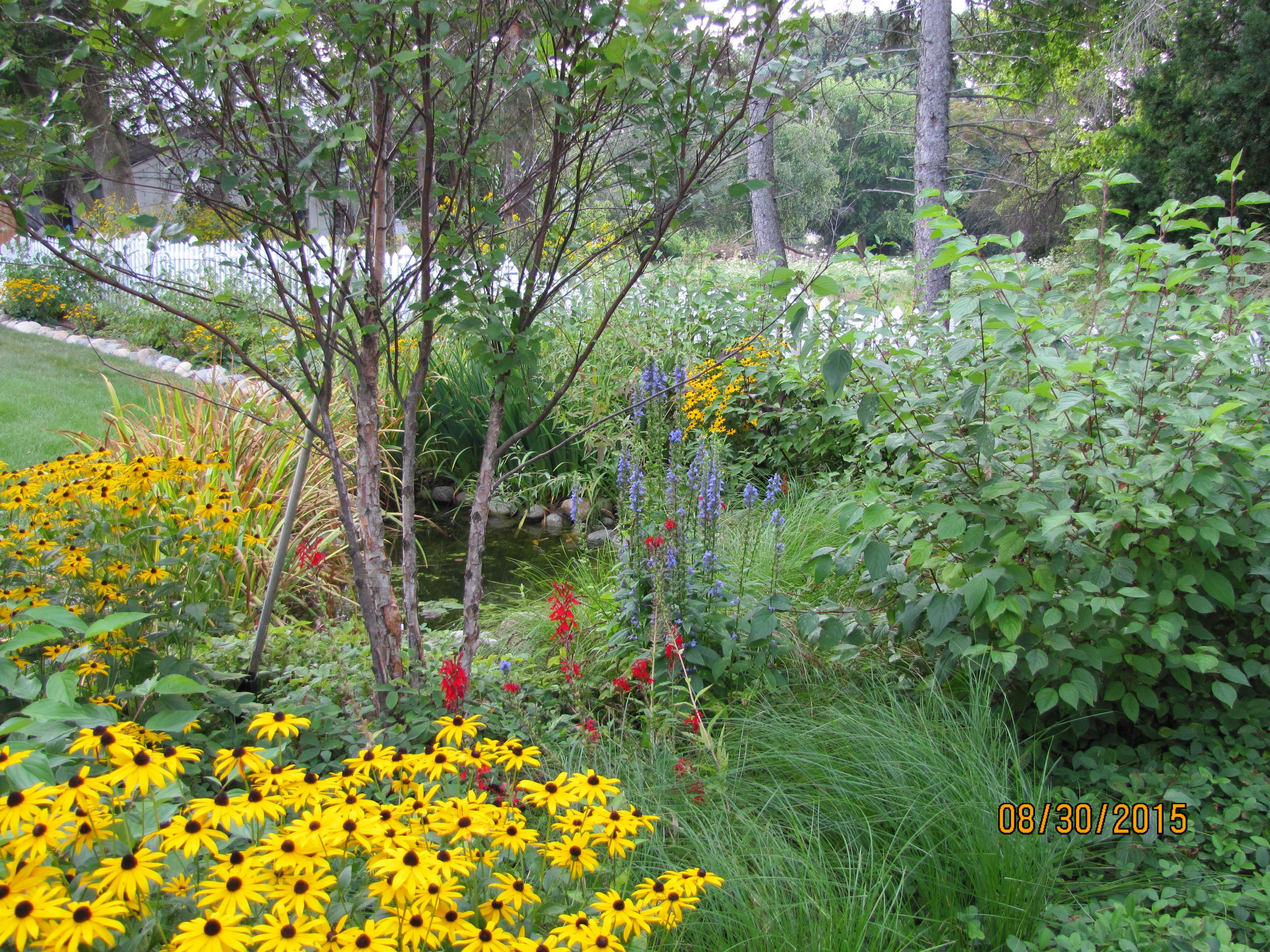 Sustainable Landscape & Rain Garden Installation in Wayne ...