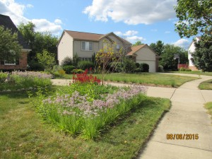 Rain garden by Creating Sustainable Landscapes